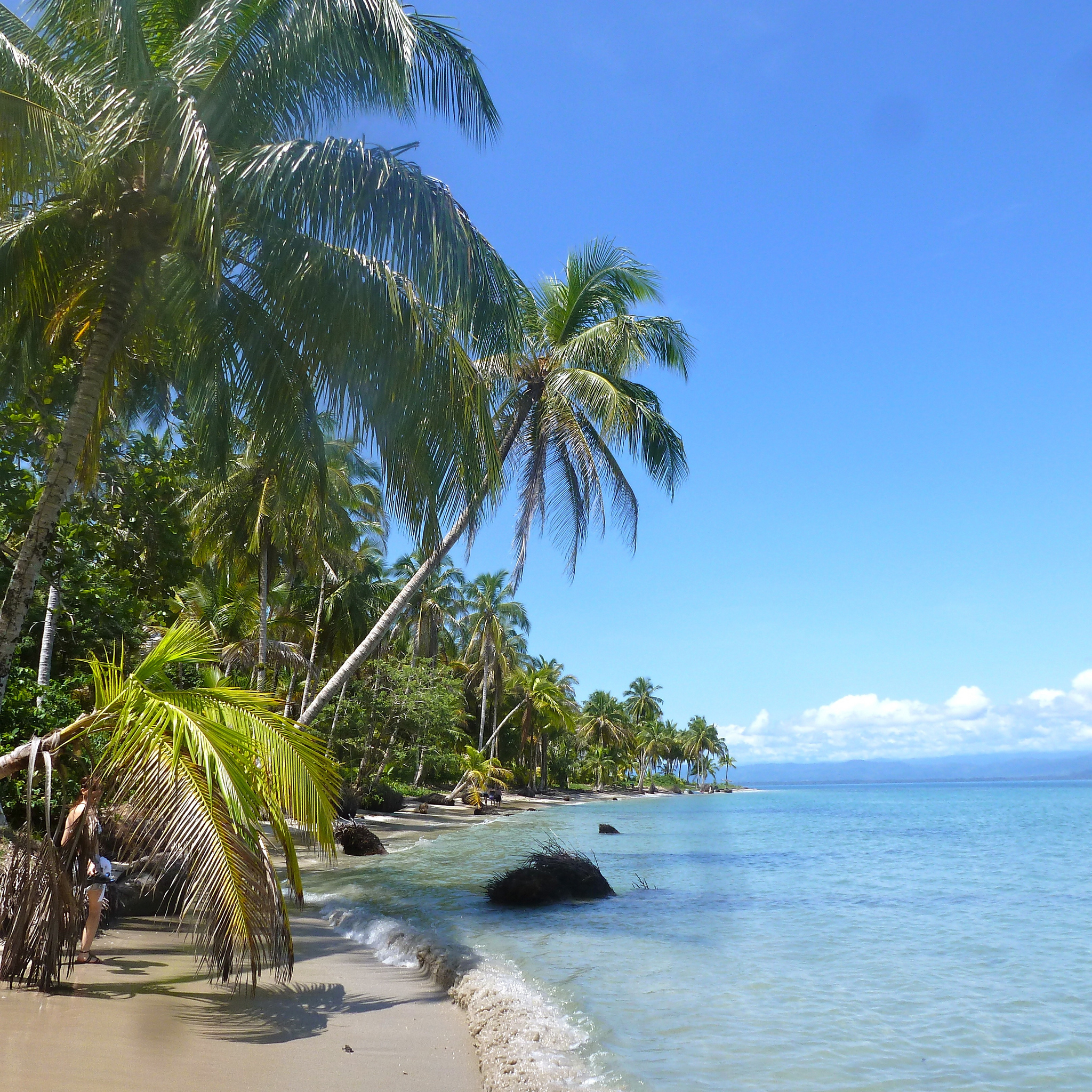 One of the things to know about visiting Bocas Del Toro: beaches like this are everywhere!